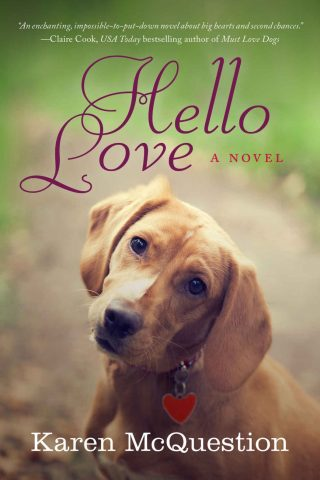 Hello Love – Karen McQuestion [kindle] [mobi]