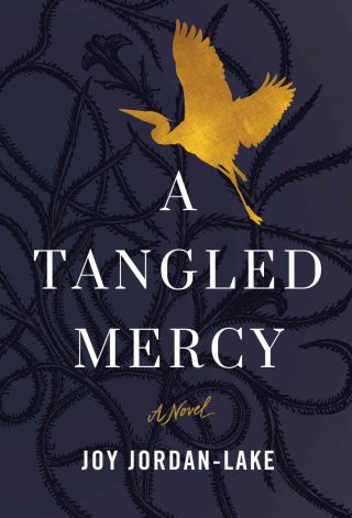 A Tangled Mercy: A Novel – Joy Jordan-Lake [kindle] [mobi]