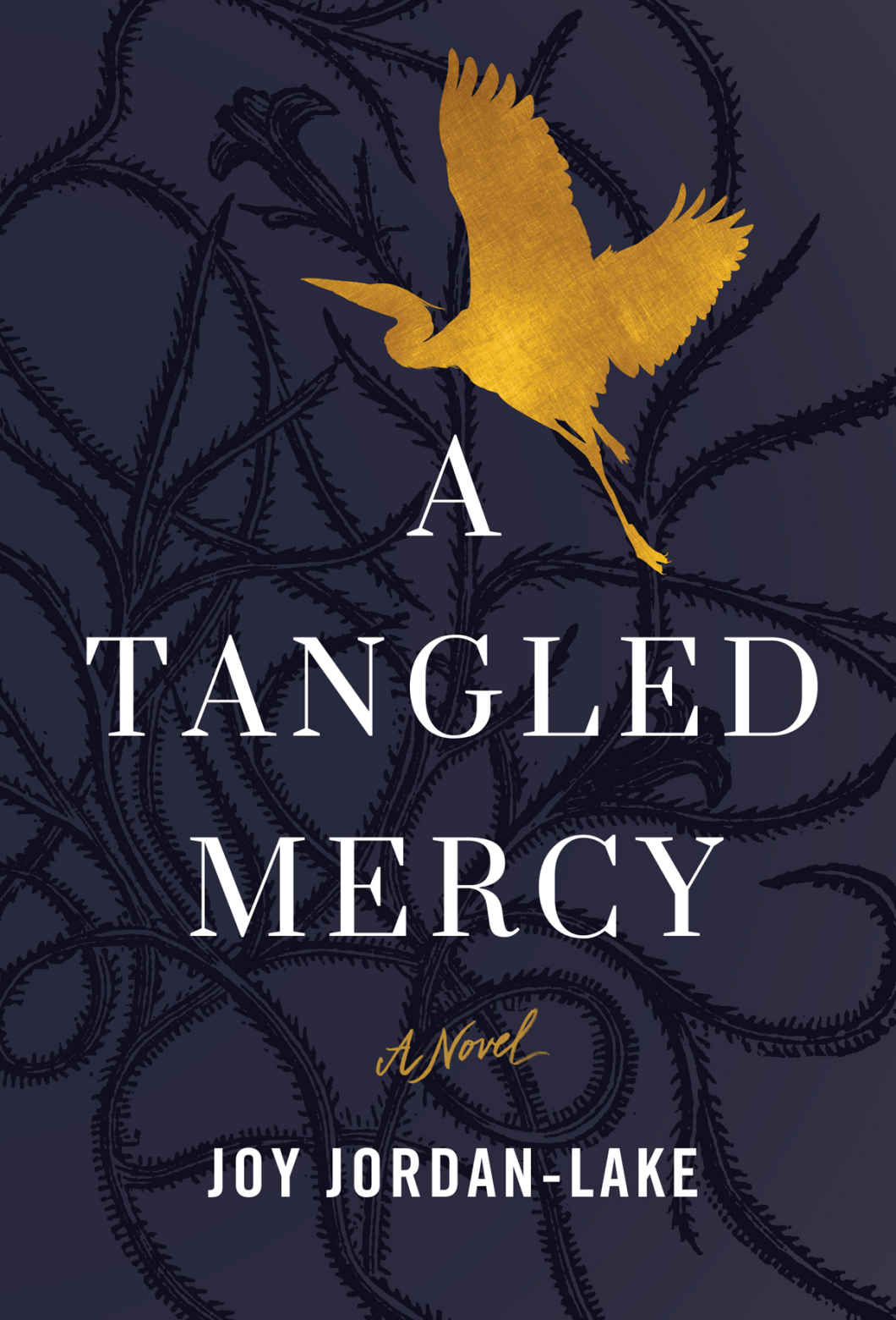 A Tangled Mercy: A Novel - Joy Jordan-Lake [kindle] [mobi]