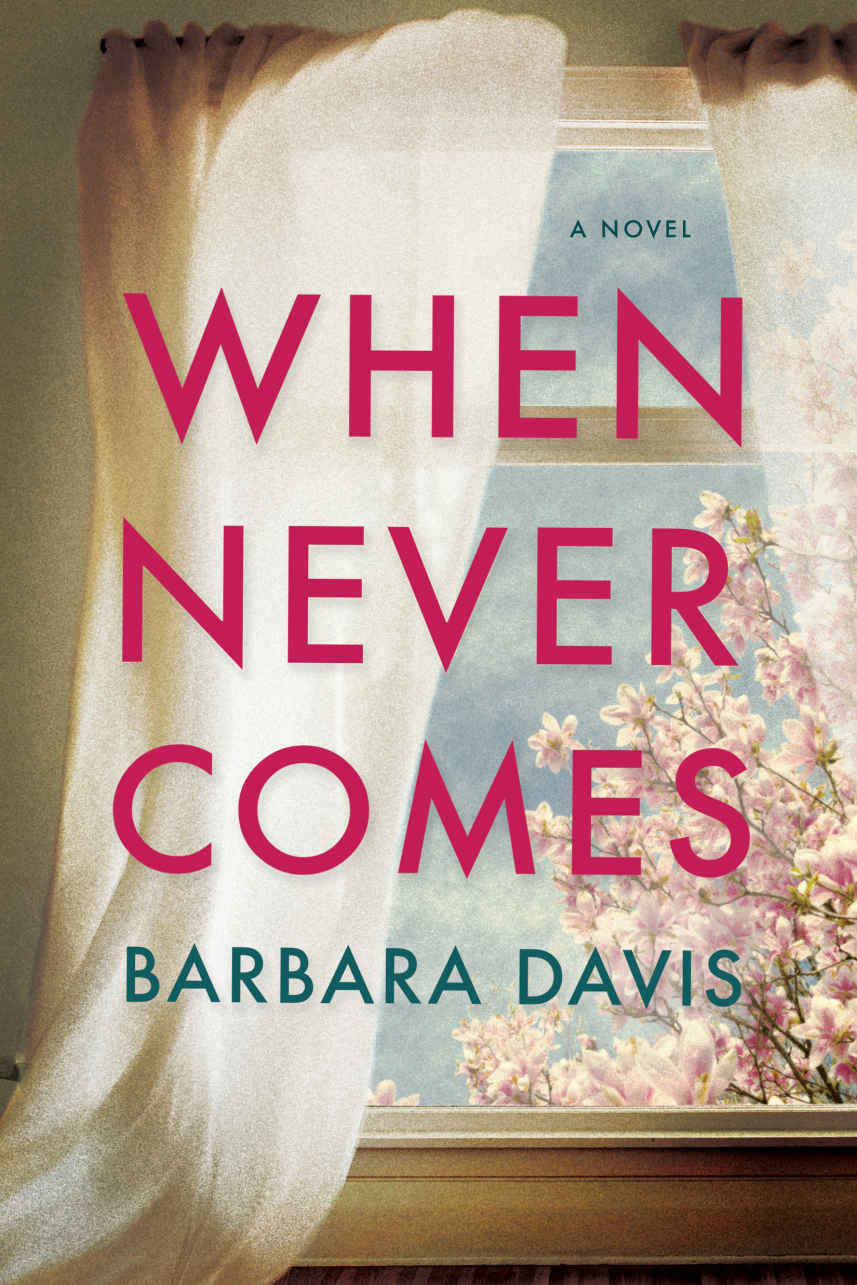 When Never Comes - Barbara Davis [kindle] [mobi]