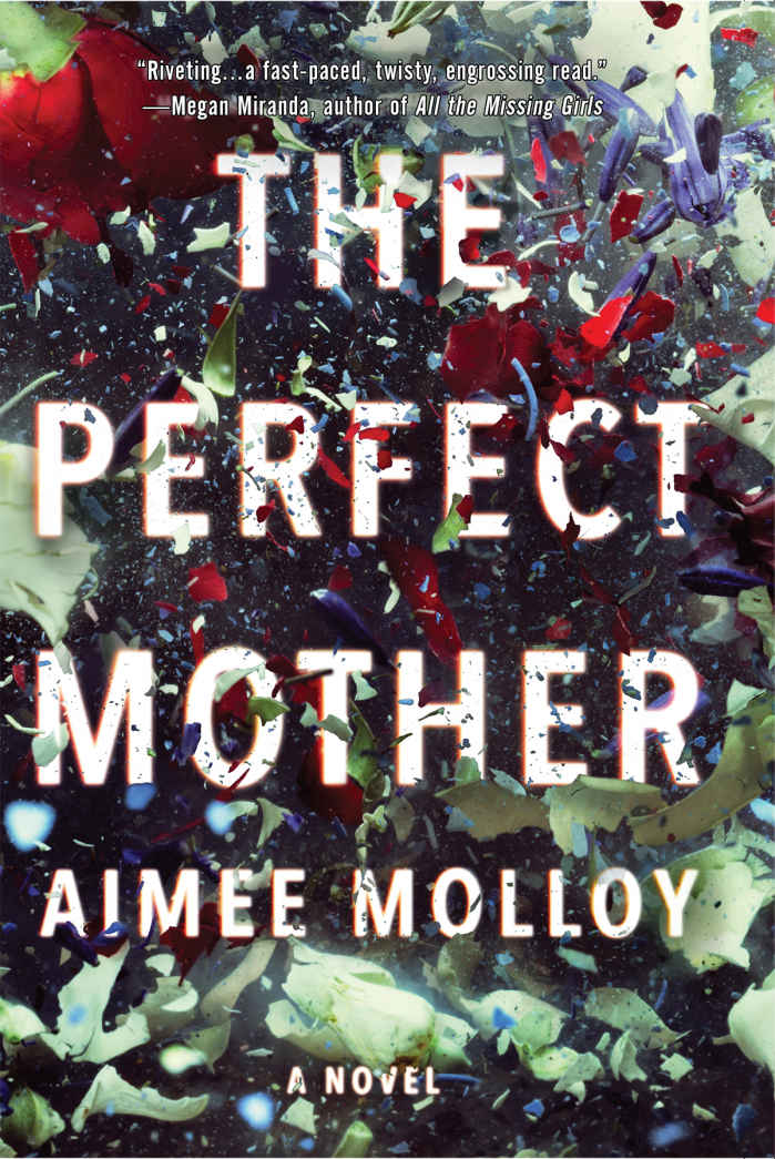 The Perfect Mother: A Novel - Aimee Molloy [kindle] [mobi]