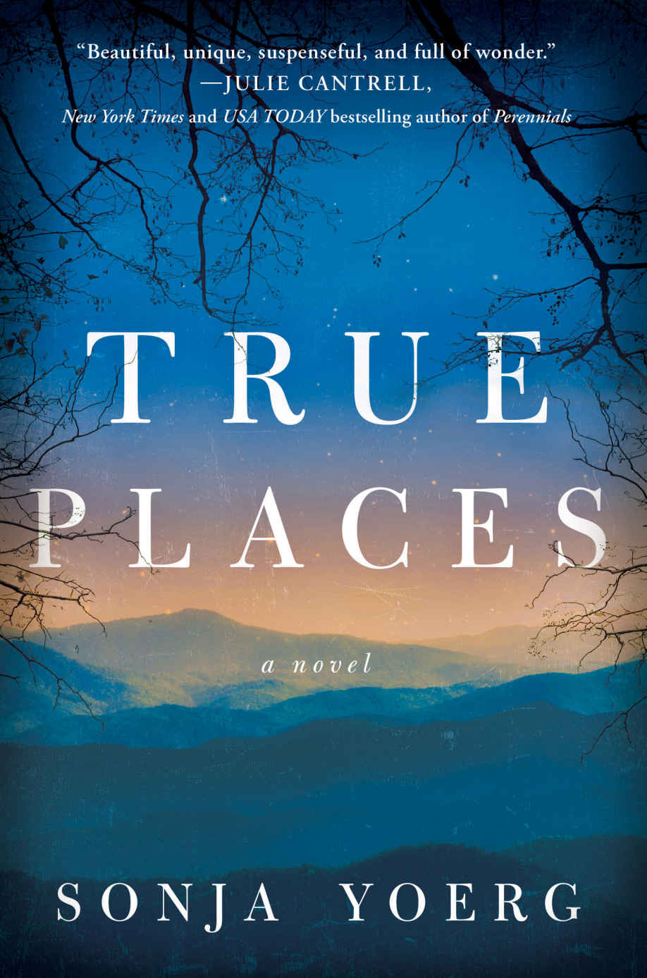 True Places: A Novel - Sonya Yoerg [kindle] [mobi]